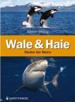 Wale & Haie Cover