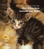 Ein Kätzchen kommt zur Welt Cover