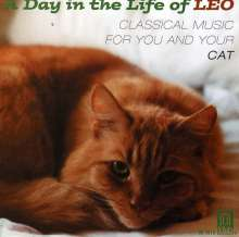 A Day In The Life Of Leo, CD