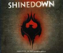Shinedown: Somewhere In The Stratosphere (2CD+2DVD), 2 CDs