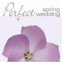 Perfect Spring Wedding, CD