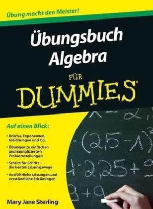 Cover von Übungsbuch Algebra für Dummies
